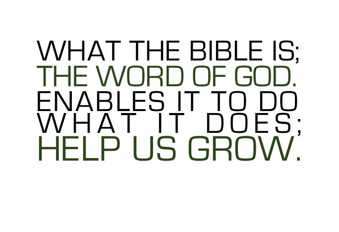 wpid-bible_grow1-2009-11-11-10-09.jpg